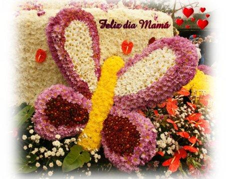 flores_exoticas-dsc02270-900